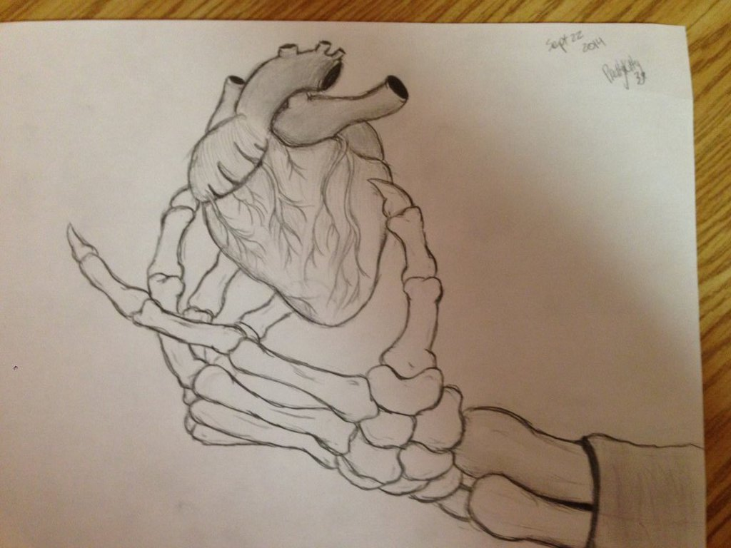 1024x768 Skeleton Hand Holding A Heart By Prettykitty39