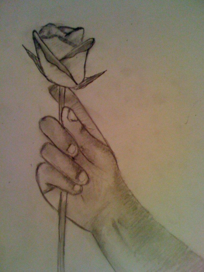 774x1032 Rose In Hand By Jamesxd