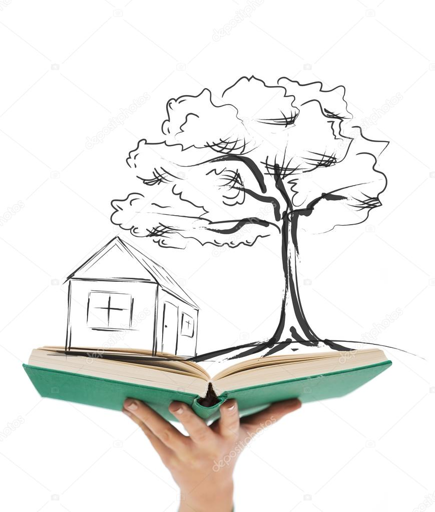 869x1023 Close Up Of Woman Hand Holding Open Book Stock Photo