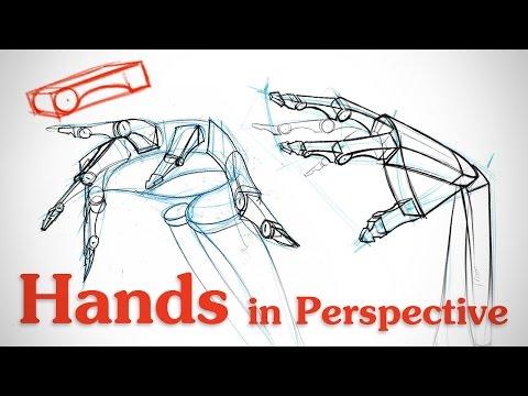 480x360 Drawing Hands In Perspective Hand Bone Critiques Proko