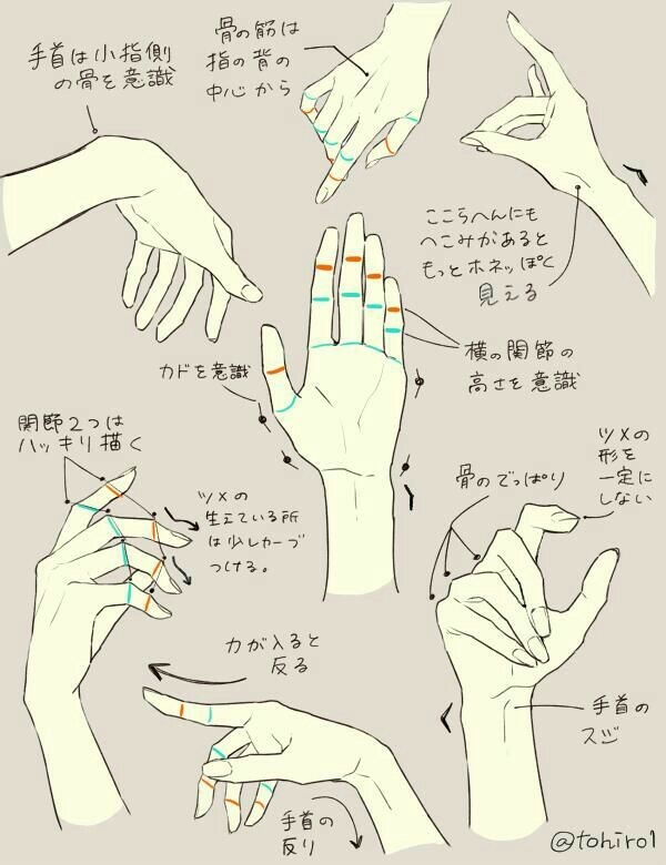 600x780 Hand, Positions, Text How To Draw Mangaanime Drawing