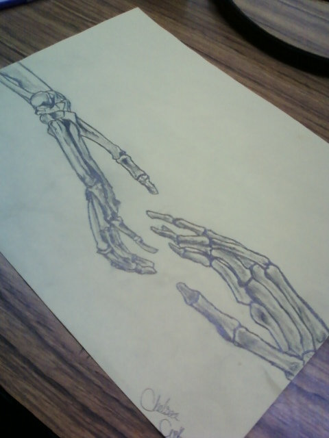 480x640 Skeleton Drawing By Okami Luver 101