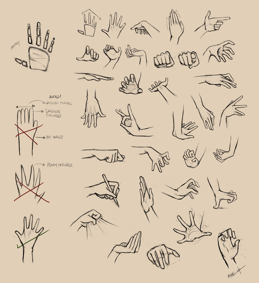 856x934 Hands Reference I By Ninjatic