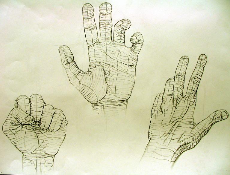 768x586 Cross Contour Hand Study 1 By Nosurprises