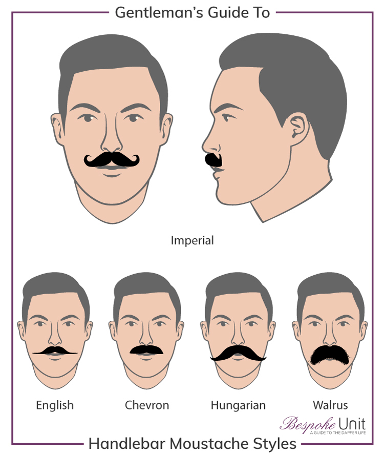 750x886 What Are Imperial Amp Handlebar Moustaches How To Grow Amp Style One