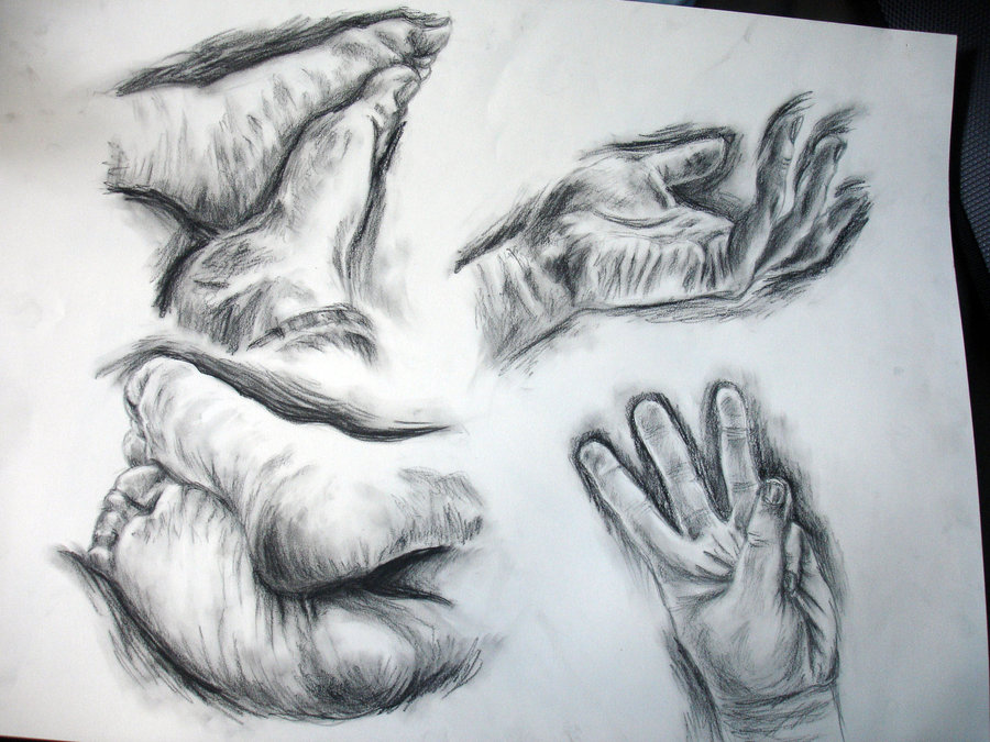 900x675 Drawing 1 Hands And Feet 3 By Zehful