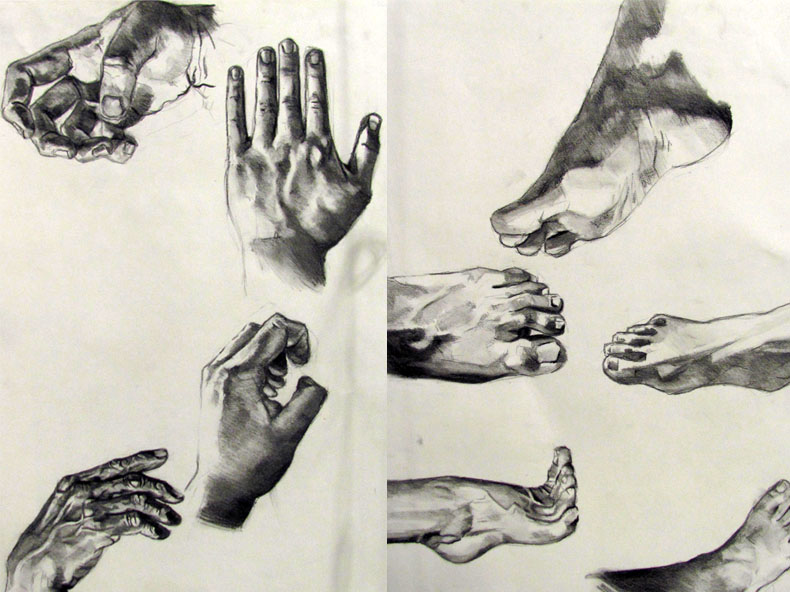 790x592 Drawing Ii Assignments