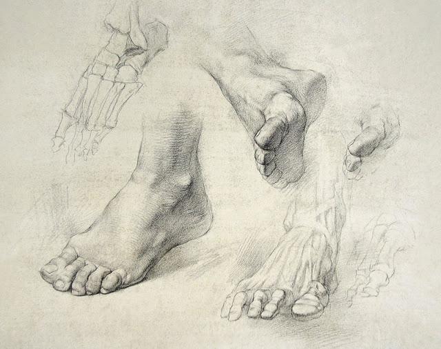 640x506 Hands Amp Feet Drawing Intensive 2 Mondays December 2017 Alia
