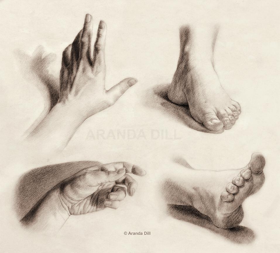 957x864 Hands And Feet By ~arandadill Human Anatomy