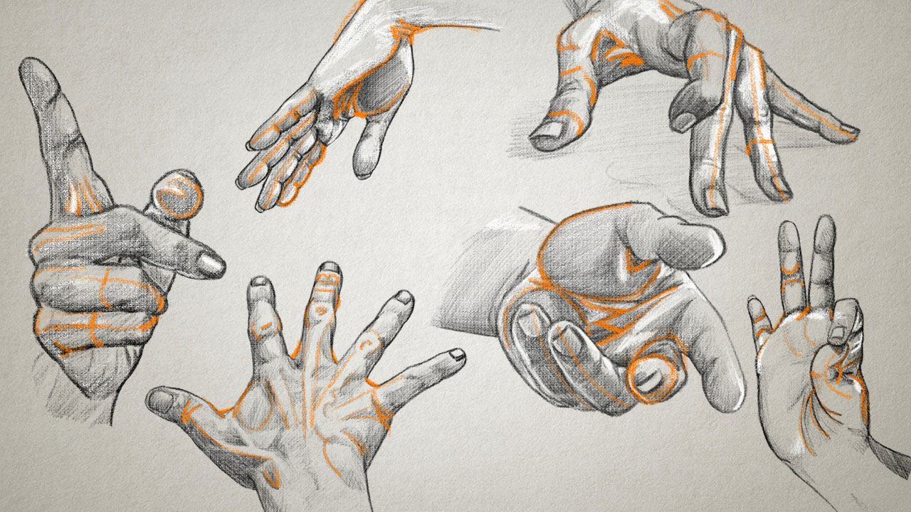 1280x720 Drawing The Arms And Hands Pluralsight