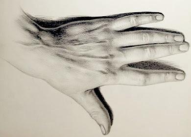390x279 Drawiing Hands