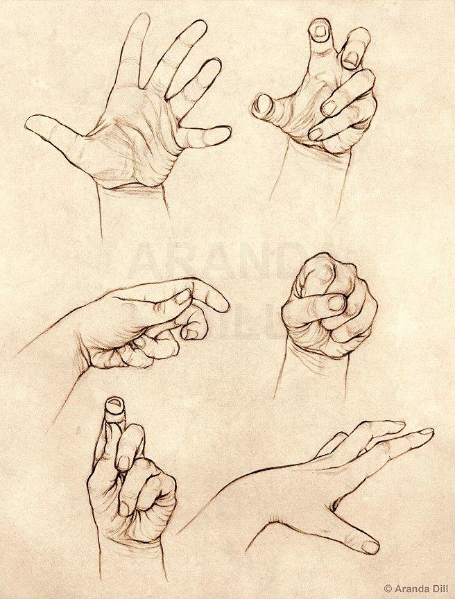 656x864 Pin By Guru Raikar On Anatomy Art Reference