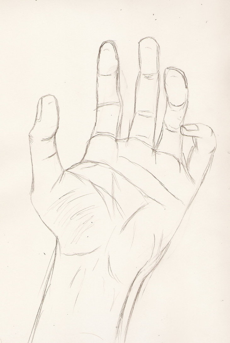 731x1092 Figure Drawing Attempt 3 Hand By Theiiofswords
