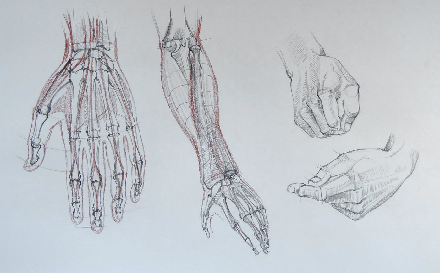 1400x868 Drawing Hands
