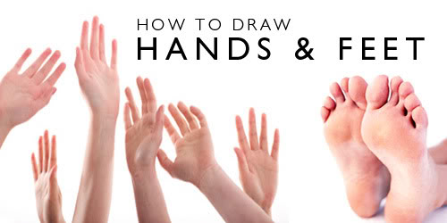 500x250 How To Draw Hands And Feet Webcomic Alliance