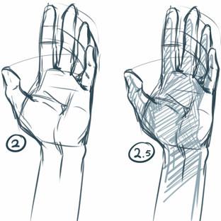 312x312 How To Draw Maca Is Rambling