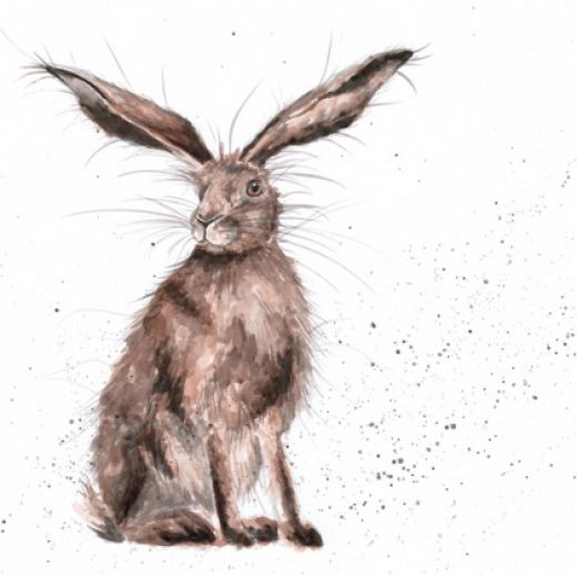 520x520 Good Hare Day' Available Now From Wrendale Designs.