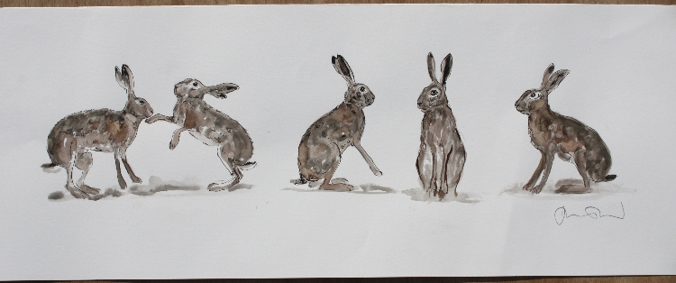 750x314 Hare Drawing Drawings Harriet Mead Four Leggers