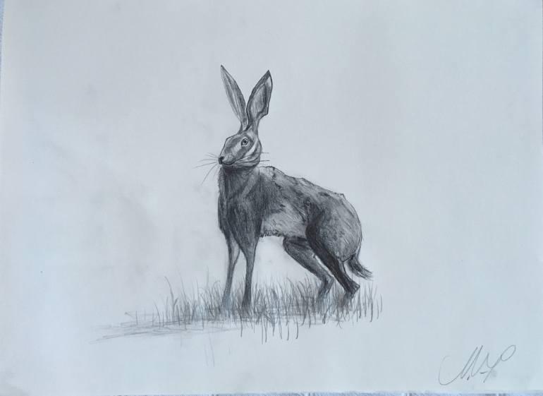770x561 Saatchi Art Hare (I Know It's Not Durer