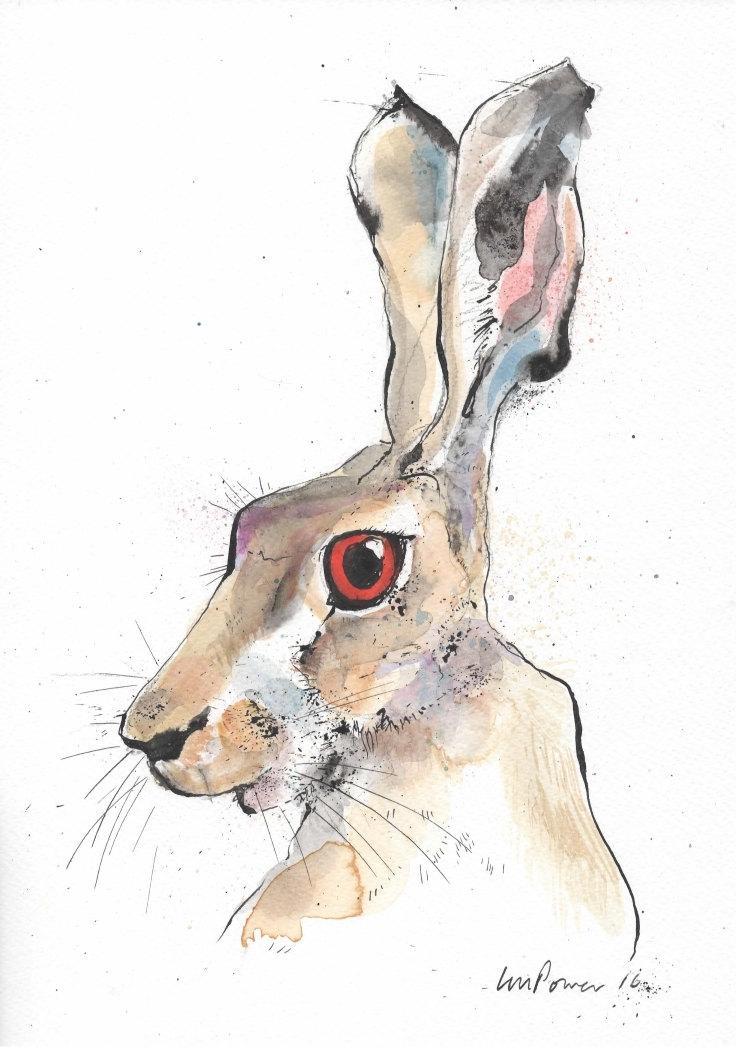 736x1047 Hare