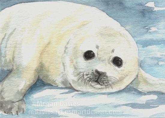 550x394 Harp Seal Pup Aceo By Pannya