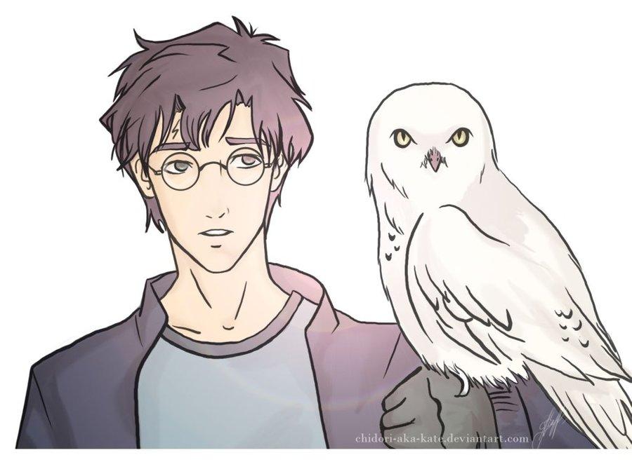900x659 Harry And Hedwig By Chidori Aka Kate