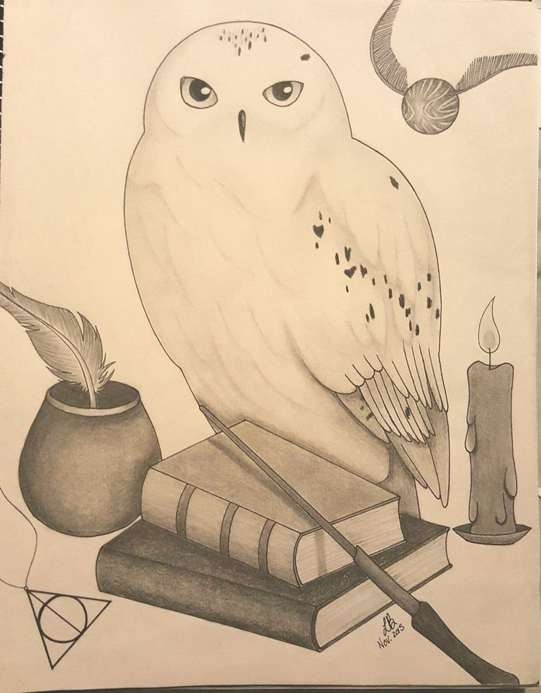 790x1011 Hedwig From Harry Potter And Other Elements By Lisakat98