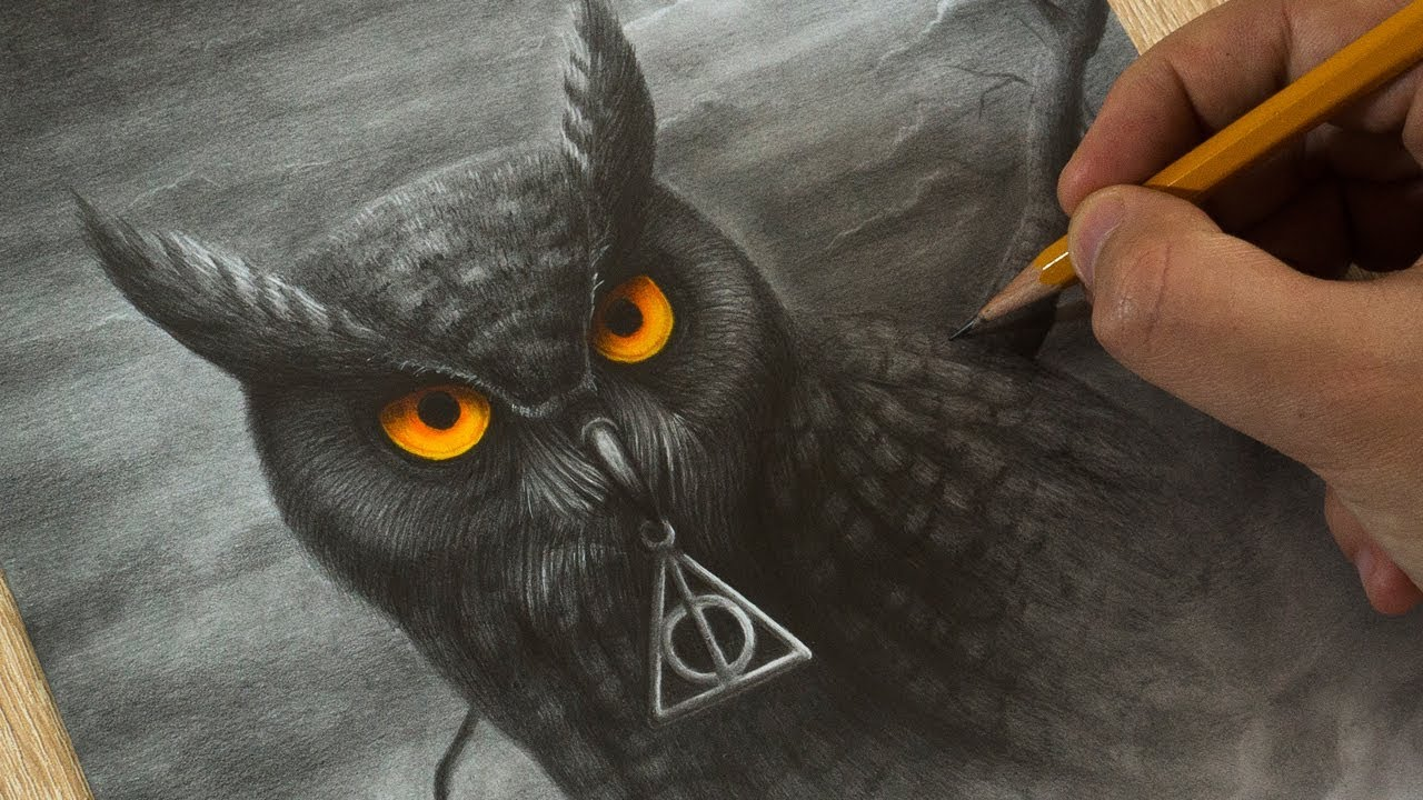 1280x720 Drawing Owl From Hogwart Harry Potter Art