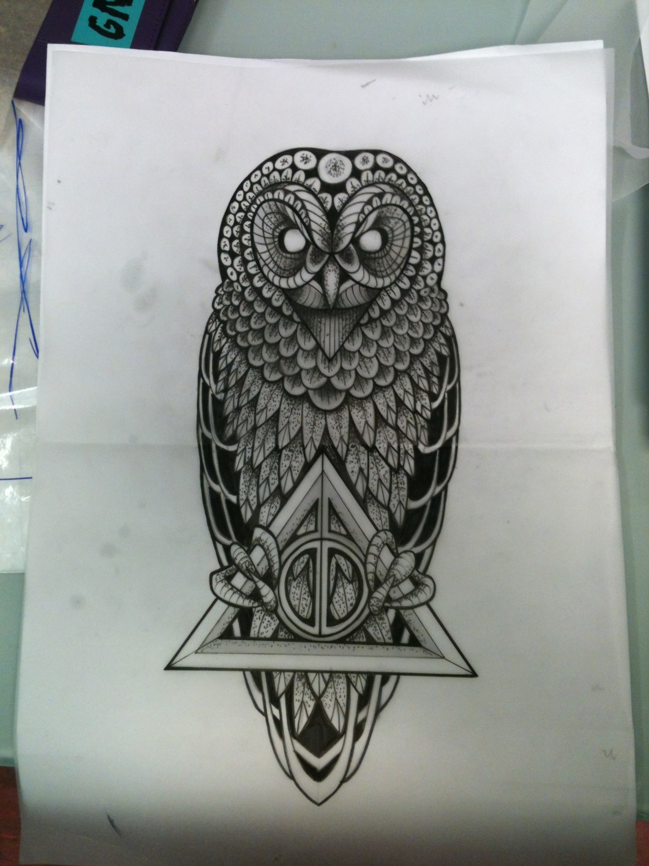 Harry Potter Owl Drawing At Getdrawings Com