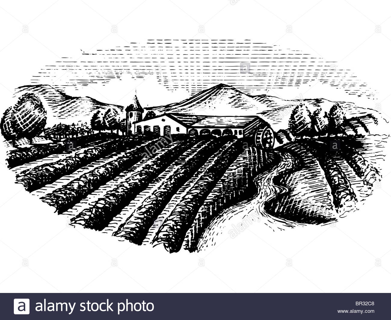 1300x1065 A Black And White Drawing Of A Farmland Ready For Harvest Stock