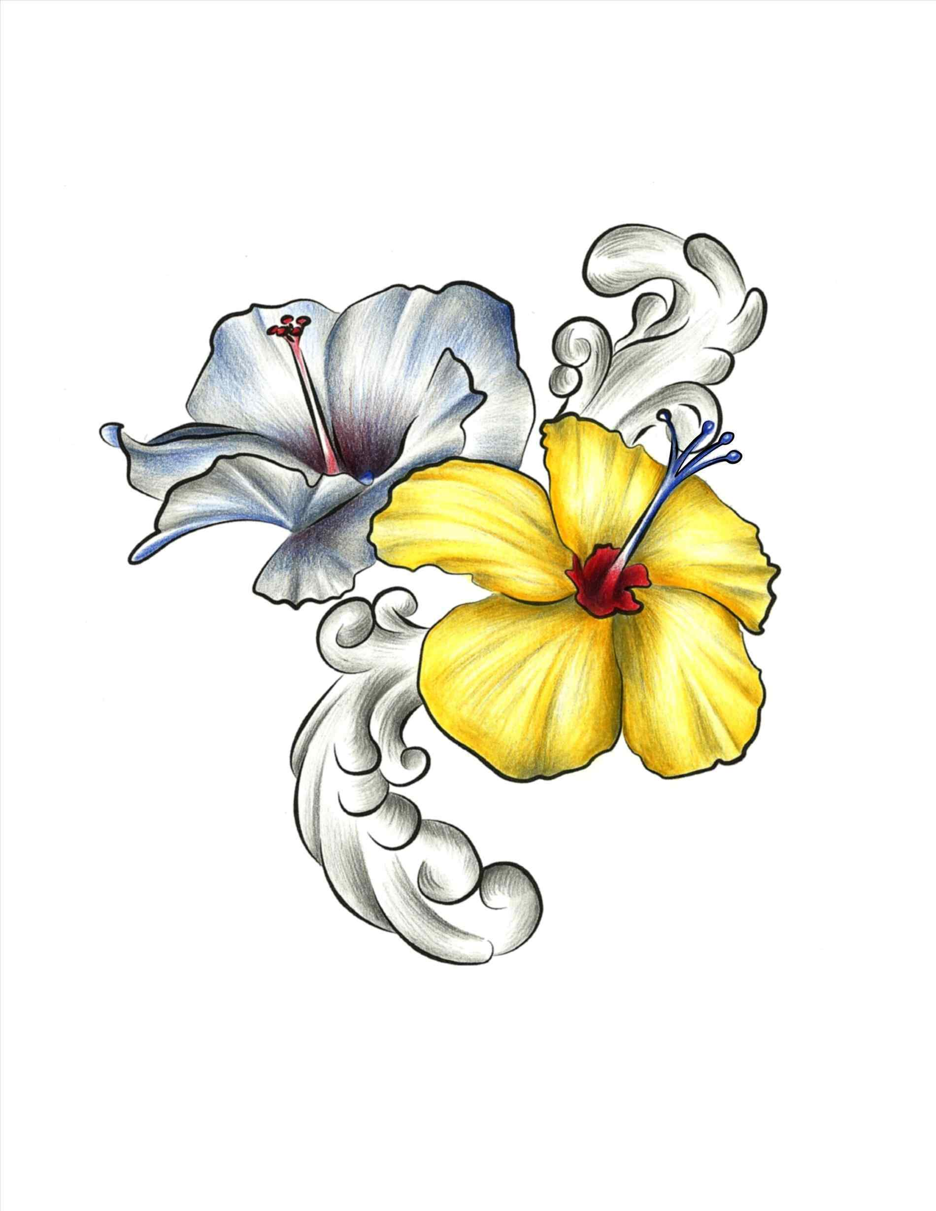 Hawaii flower drawing at getdrawings free for personal use 1900x2458 drawings of hawaiian flowers your meme source izmirmasajfo Image collections
