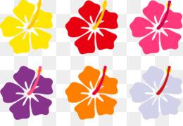 260x180 Free Download Hawaiian Flower Drawing Clip Art