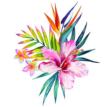 350x350 Hibiscus Flower Tattoos Hibiscus Tattoo, Hawaiian Flower Tattoos