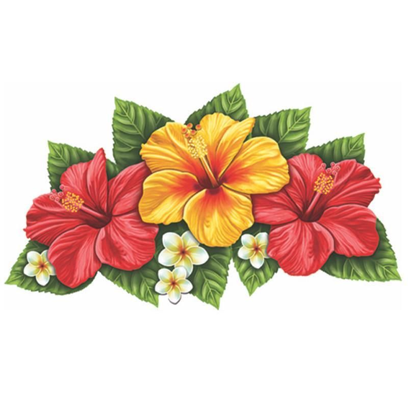 800x800 Triple Hibiscus Flower