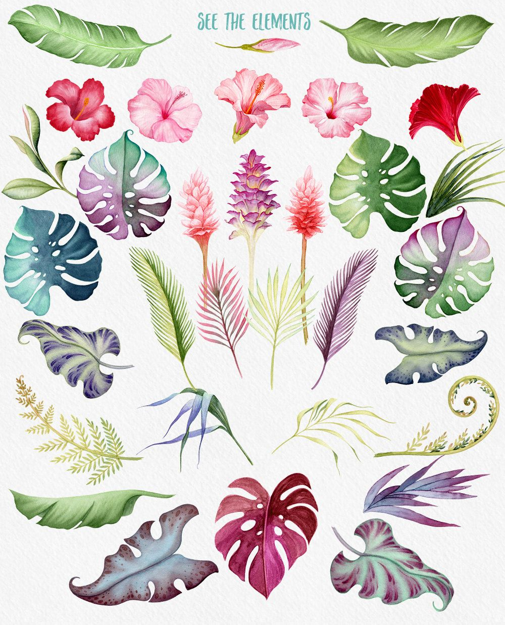 1000x1237 Watercolour Flowers, Hawaii Clipart, Tropical Flowers, Hibiscus