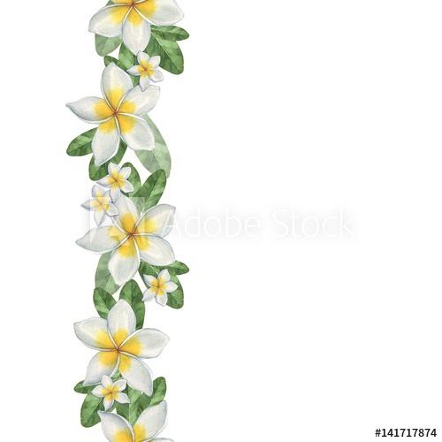 500x500 Hawaiian Flowers. Seamless Border. Watercolor Illustration. Hand