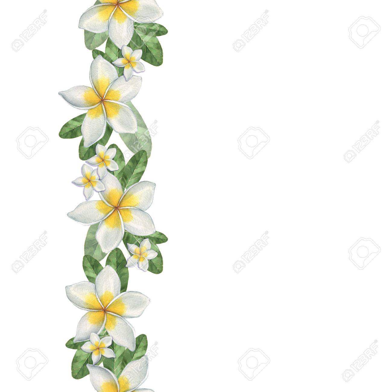 1300x1300 Hawaiian Flowers. Seamless Border. Watercolor Illustration. Hand