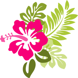 297x298 Hawaii Clipart Hibiscus Drawing