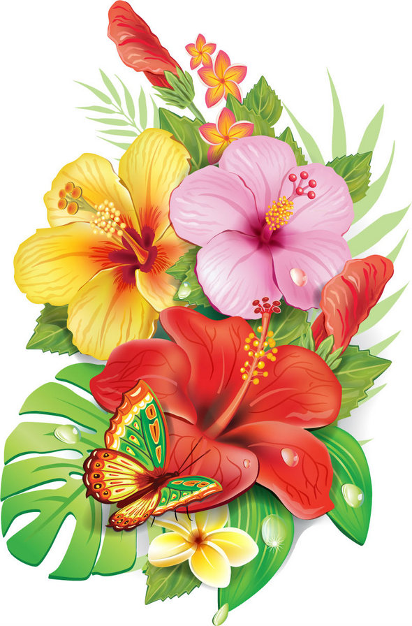 Hawaiian Hibiscus Drawing At Getdrawingscom Free For Personal Use