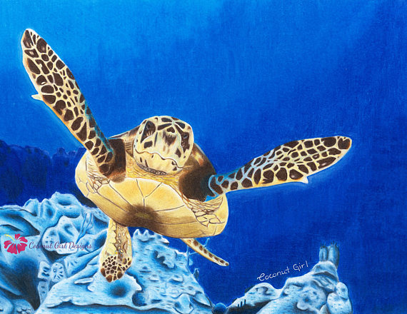 570x440 Sea Turtle Sea Turtle Art Sea Turtle Decor Sea Turtle