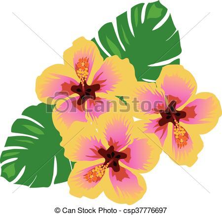 450x436 Hawaii Flower. Vector Tropical Flowers Eps Vectors