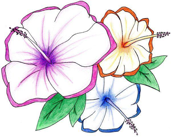 600x482 Rainbow Hawaiian Flowers By On @