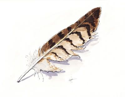 400x311 Feather Paintings Step By Step Watercolor Demonstration