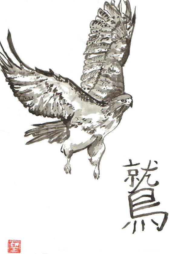 572x839 Flying Hawk Grey Ink Tattoo Design
