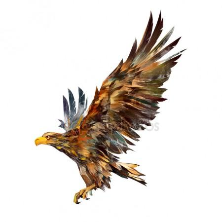 450x450 Drawing Flying Bird Hawk In Attack Stock Photo Khius