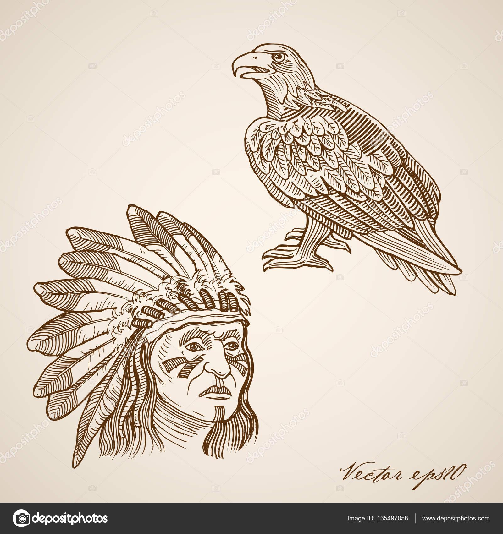 1600x1700 Indian And Hawk Head Stock Vector Sentavio