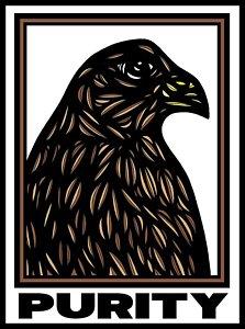 223x300 Hawks Drawings