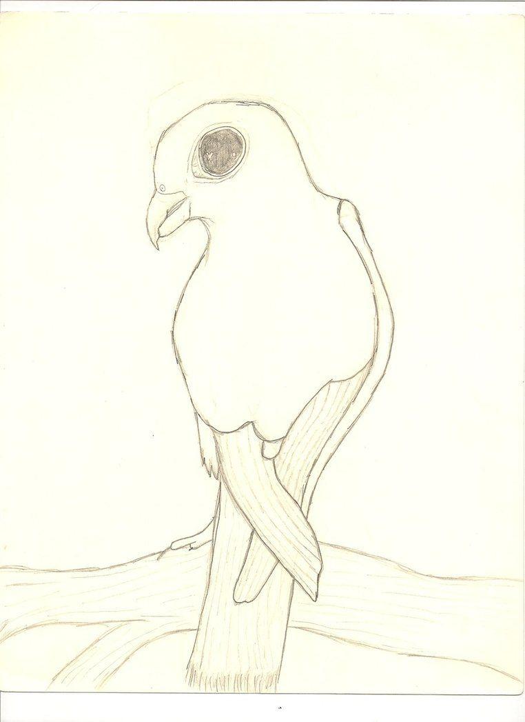 762x1047 Drawing Of A Hawk By ~unbroken Lost Soul On Tattoo