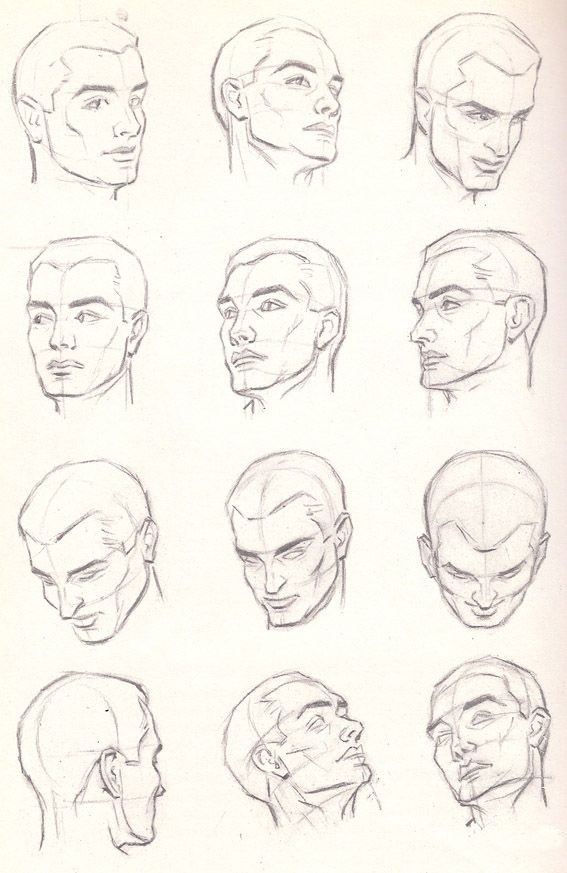567x873 How To Draw The Male Head Anatomy