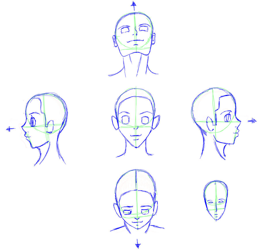 915x872 Helping Artist Drawing Head Angles By Vesenia